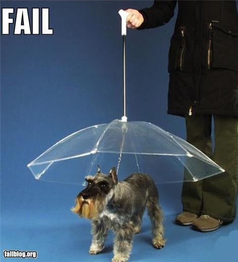 Product FAIL | Fail | Scoop.it