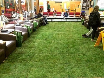 Cornell Installs Indoor Lawn to Soothe Students During Finals (Photos) | Vertical Farm - Food Factory | Scoop.it