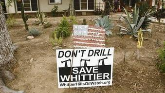 Oil company begins clearing Whittier nature preserve | Environmental progress | Scoop.it