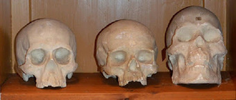 Sweden returns skulls to Polynesia | The Archaeology News Network | Kiosque du monde : Océanie | Scoop.it
