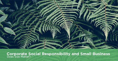 Corporate Social Responsibility and Small Business: Does Size Matter? | Corporate Responsibility and Ethical Issues in Business | Scoop.it