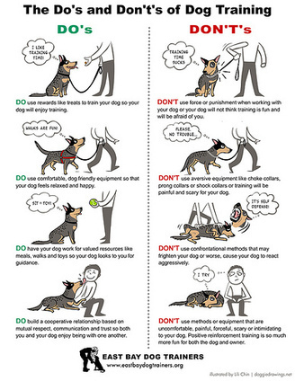 Dog Training-related Drawings | gad&tocs | Scoop.it