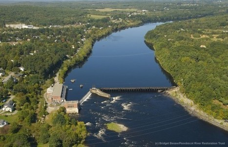 Removal of Veazie Dam Begins on Maine's Penobscot River - National Geographic | Fish Habitat | Scoop.it