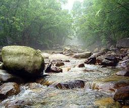 Rivers Act As 'Horizontal cooling towers' | Sustain Our Earth | Scoop.it
