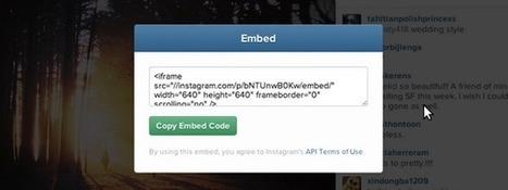 12 plugins de Instagram en Wordpress para galerías slider y más | Diseño Web Social - Josu Salvador y Olazabal | Scoop.it