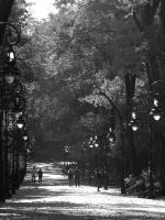 photo: In the park 2 | photographer: john | WWW.PHOTODOM.COM | lili box likes | Scoop.it