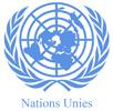 Conférence des États parties à la Convention de 2006: les personnes handicapées réclament leur droit de participer à la vie politique et publique | AMH | Plaidoyer | Scoop.it