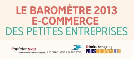 Les PME et Internet - Infographie barometre 2013 e-commerce des PME | Actu et stratégie e-commerce | Scoop.it