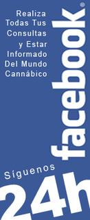 BHO Pipe G-Lock 67 - €80.00 : GROWSHOP THCBARCELONA - SEMILLAS DE MARIHUANA - VENTA SEMILLAS, TIENDA DE SEMILLAS DE MARIHUANA O CANNABIS PARA COMPRAR SEMILLAS MARIHUANA Y CULTIVOS DE INTERIOR CON L... | thc barcelona | Scoop.it