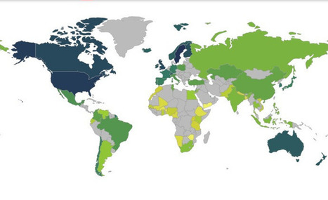 The Web Index | by World Wide Web Foundation | Digital | Scoop.it