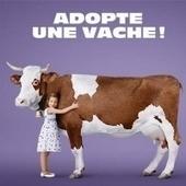 Après Adopte un mec, Adopte une vache - E-marketing | Some Awesomeness | Scoop.it