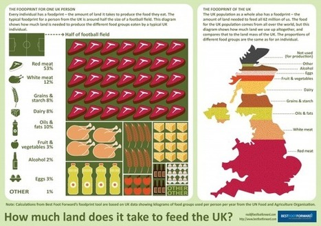 INFOGRAPHIC: How much land does it take to feed the UK? | MINING.com | Sustain Our Earth | Scoop.it