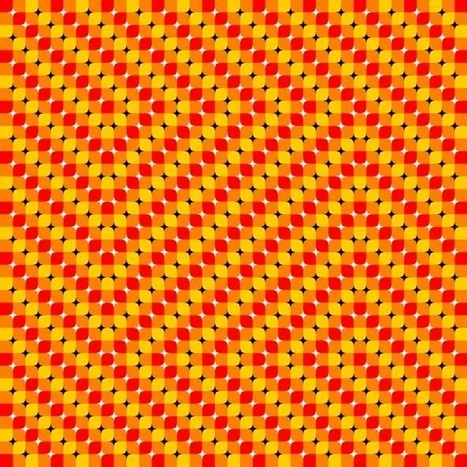 Mind-Bending Optical Illusions | Xposed | Scoop.it