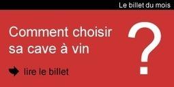 Caves-a-vin.org : le guide de la cave à vin | Consommation et loisirs | Scoop.it