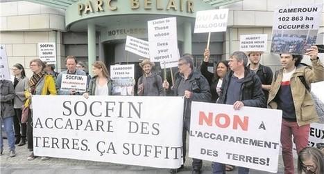 Socfin pointée du doigt pour sa politique foncière en Afrique | Postcolonial | Scoop.it