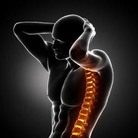 Plein la tête et plein le dos : s'agirait-il des mêmes douleurs ? - Chronique de la douleur | douleurs et troubles neuro-musculo-squelettiques : approches et traitements | Scoop.it