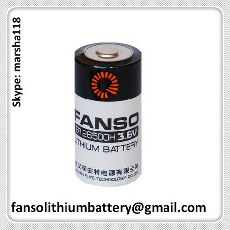FANSO ER26500 3.6V Li/SOCL2 Battery C Size for Gas Meter | FANSO Lithium Battery 3.6v & 3.0v Manufactuer of China. Contact Marsha if you need with fansolithiumbattery@gmail.com or skype: marsha118 | Scoop.it