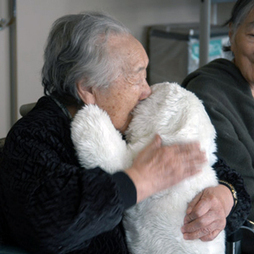 iRobot and Others Look Ahead to Robotic Elder Care | MIT Technology Review | Managing the Transition | Scoop.it