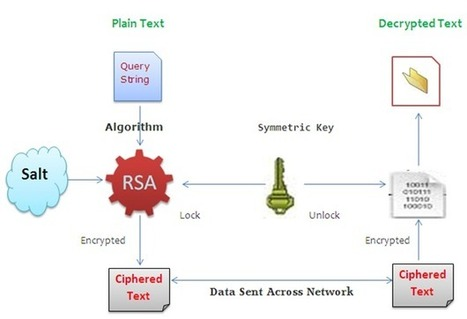 #Vulnerable #Encoded #URL | #Security #InfoSec #CyberSecurity #Sécurité #CyberSécurité #CyberDefence & #eCommerce | Scoop.it