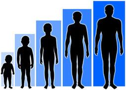 Cara Alami Menambah Tinggi Badan | Super Cepat | Ulan News | Chiee UL Chabellhee Dear | Scoop.it