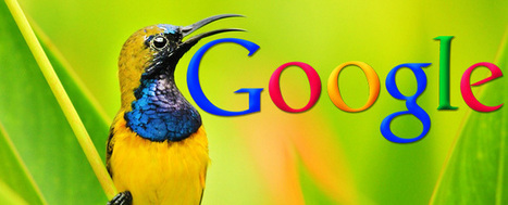 Google Hummingbird-fast and precise search results | Digital Marketing | Scoop.it