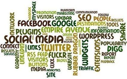 Les réseaux sociaux dominent l'usage d'Internet | Radio 2.0 (En & Fr) | Scoop.it