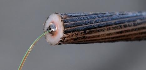 Le chantage des opérateurs télécoms européens contre la neutralité du net | Immoricuss | Scoop.it