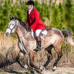 From The State Pen To The Hunt Field | The Chronicle of the Horse | From the Equine Blogosphere | Scoop.it