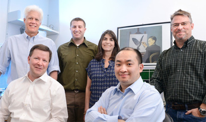 CRISPR-CAS shows promising results for correcting muscular dystrophy in mice   Amazing Science   Scoop.it