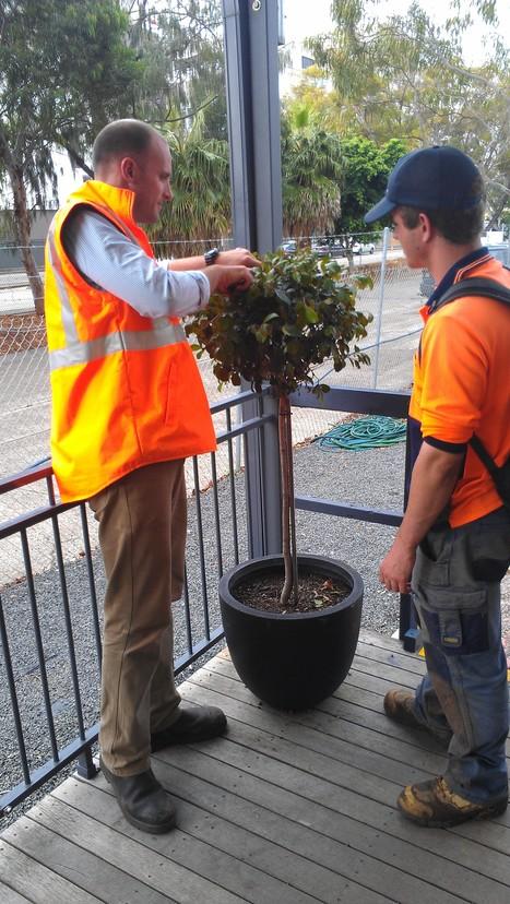 Guy & Shaun....Horticulturalist | Work & Play; It's Risky Business | Scoop.it