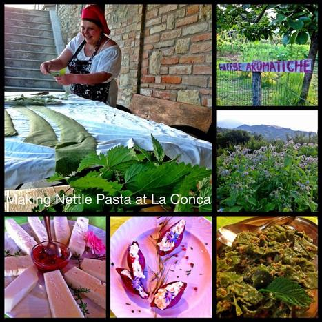 For The Most Magical Marche Experience! | Hideaway Le Marche | Scoop.it