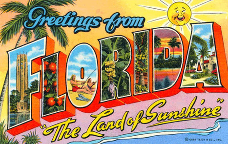 In the latest edition of my VICE column 'This Week in Florida,' a woman gets caught with oxycodone in her vagina | The Billy Pulpit | Scoop.it