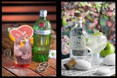 Saca tu lado más cultureta en el día del Gin Tonic | GinTonics | Scoop.it