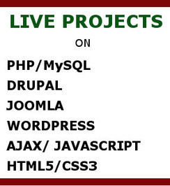 Our Courses | web development institute, web design and development institute in delhi | Scoop.it