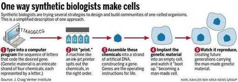 Synthetic biology: Stanford, UC Berkeley engineering a new frontier | SynBioFromLeukipposInstitute | Scoop.it