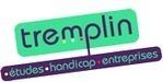 Offres d'emploi CDMGE   Tremplin   Études, Handicap, Entreprises   Solidarité, Chomage, formation et compétences   Scoop.it