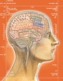 Brain Trials: Neuroscience Is Taking a Stand in the Courtroom - Magazine - ABA Journal | Mind (un?)fitting the future | Scoop.it
