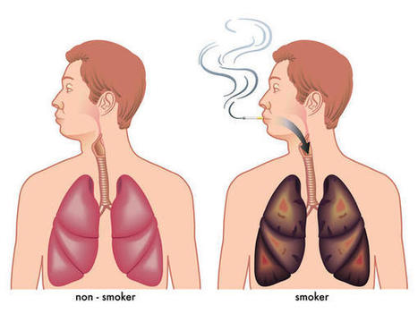 How To Detox Your Lungs After You Quit Smoking - | Emotional and Personal Growth | Scoop.it