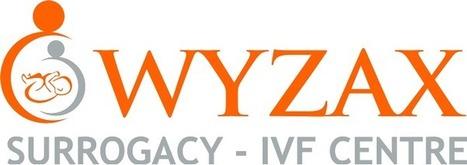 Wyzax   Wyzax Surrogacy   Scoop.it