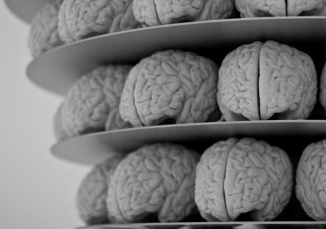 Les progrès de la modélisation 3D au service de la neurologie et de l'informatique | Libertés Numériques | Scoop.it