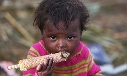 Malnutrition linked to nearly half of deaths among under-fives | Global development | The Guardian | Poverty | Scoop.it