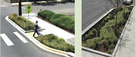 Green Streets: una politica anti-alluvioni | Urbanistica e Paesaggio | Scoop.it