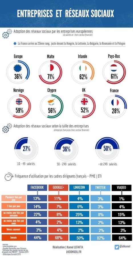 Les #Entreprises #françaises et les #réseaux #sociaux | Réputation, Web 2.0 et réseaux sociaux responsables | Scoop.it