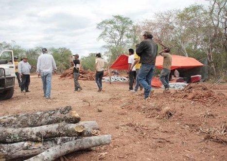 Avances y retrocesos en derecho indígena - ABC Color | aborígenes argentinos | Scoop.it