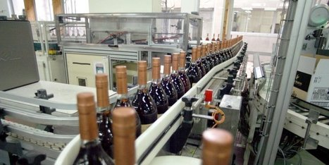 Cognac : le temps des records est révolu | Actualités du Cognac | Scoop.it