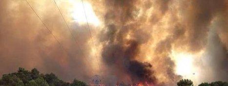 Las negligencias causan el 40% de los incendios en Catalunya   Ciència al CFA Palau de Mar   Scoop.it