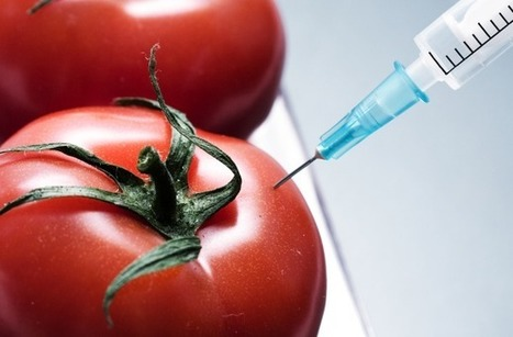 What Does GMO Labeling Mean For You? | Research, Applied Thinking and Applied Theory: Solutions with Interesting Implications, Problem Solving, Teaching and Research driven solutions | Scoop.it