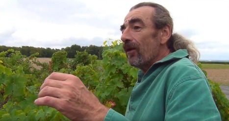 Portraits de vignerons | Gérard Marula | World Wine Web | Scoop.it