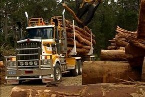 Millions meant for dismantling Tas forestry now to be injected into industry   Australian Forests   Scoop.it