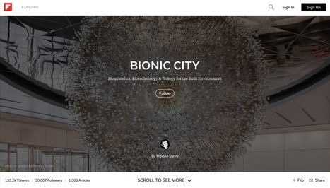 Bionic City magazine, Oct 2015 | Bionic City | Scoop.it